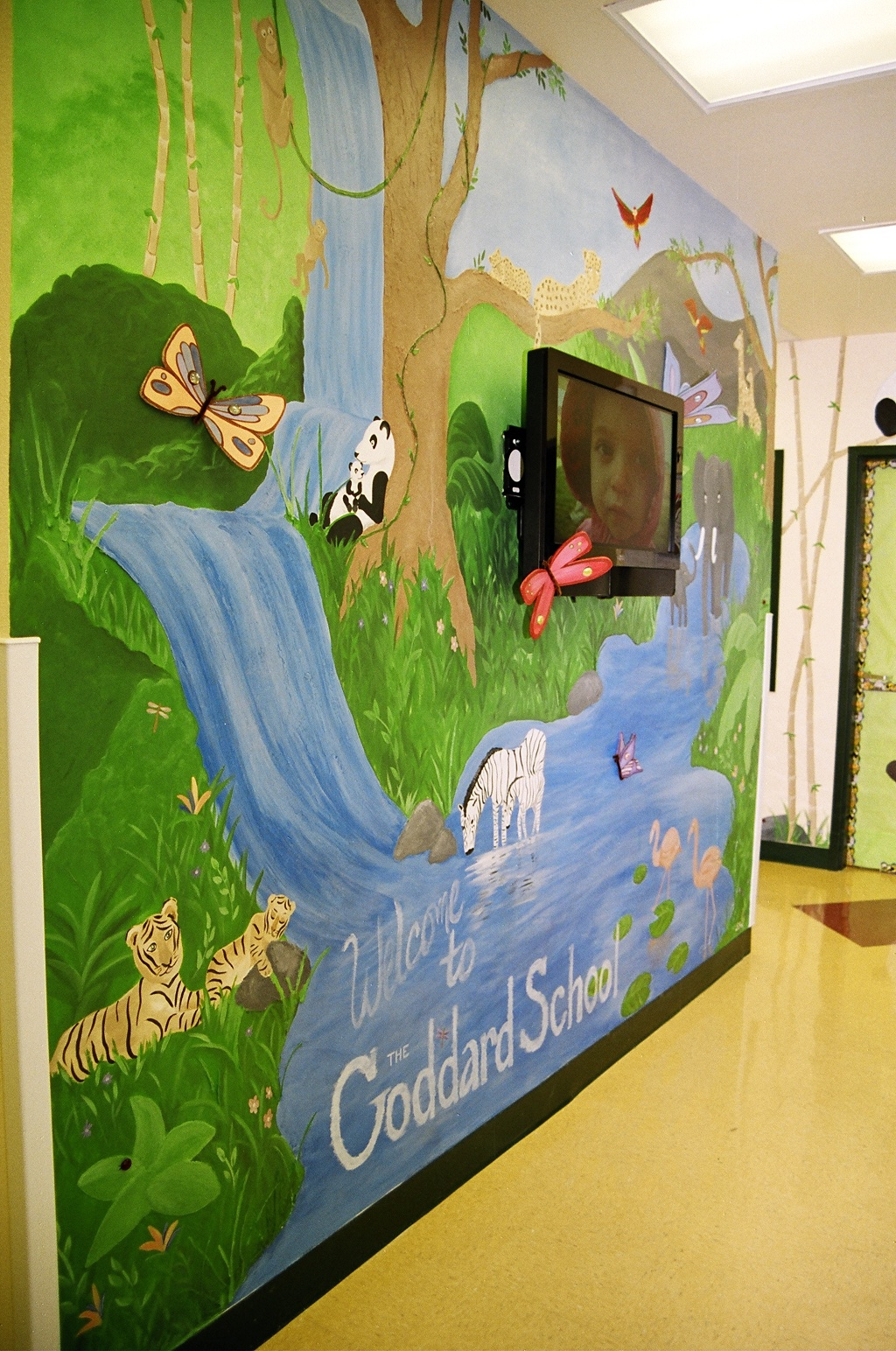 Murals faux finishes san antonio austin texas for Austin frog mural